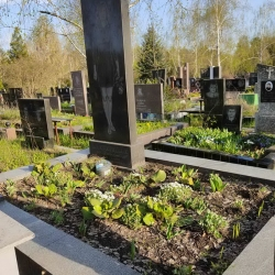 Уборка могилы. Лесное кладбище. До